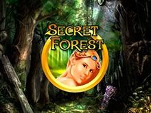 Secret Forest от Вулкана Делюкс