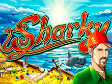 Sharky через вход в клуб