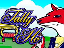 Играть онлайн с выводом из казино в Tally Ho