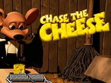 Преследуй Сыр и отыщи свой главный приз автомата